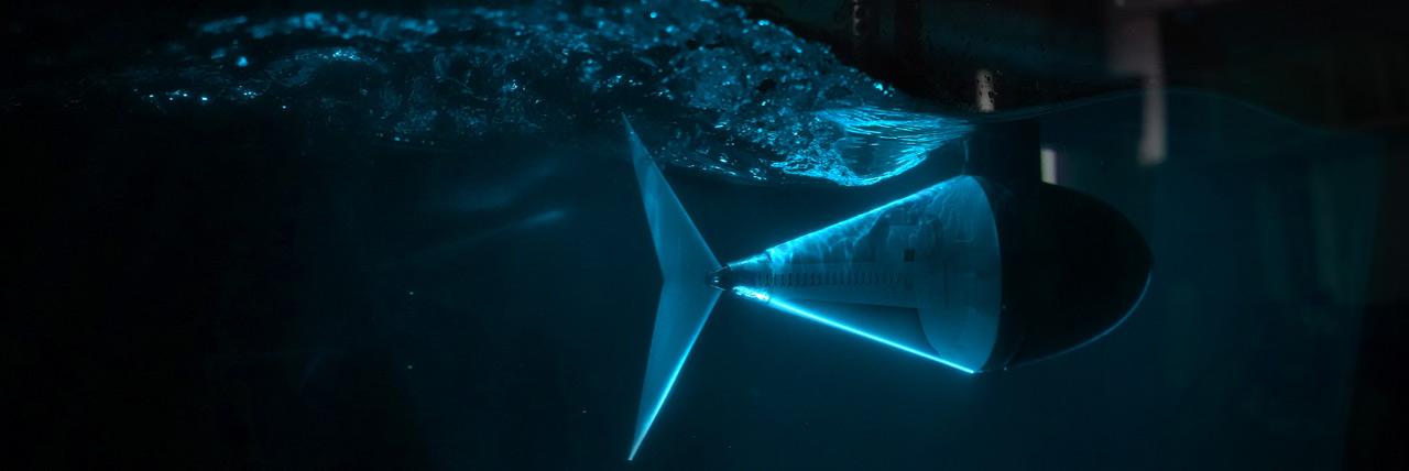 Robotic Tuna with Tunable Tail