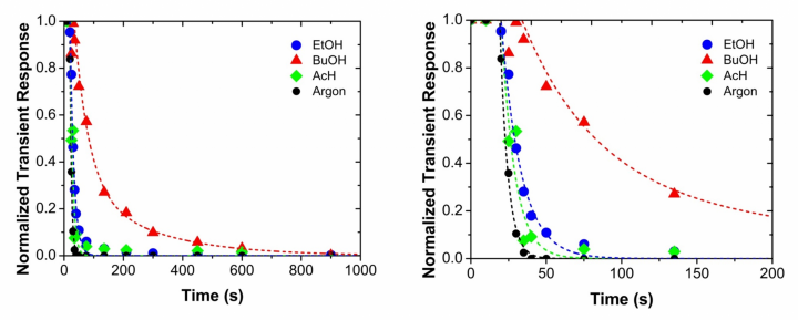 Steady-state isotopic transient kinetic analysis