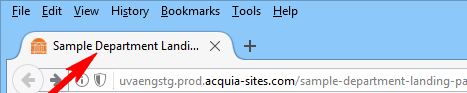 title-field-in-browser-tab.png