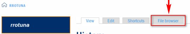 file-browser-tab.png