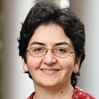 Mona Zebarjadi - Image