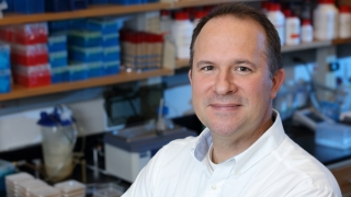 UVa BME Professor Jason Papin has a new NIH RO1