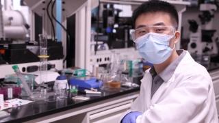 Shifeng Nian at work bench in Soft Biomatter Lab