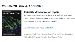 Griffin Tissue engineering MAP gels nature materials research article