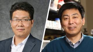 Zan Gao & Prof Xiaodong Li
