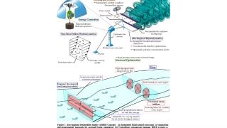 BIRE diagram, Hilary Bart-Smith, renewable energy, rivers